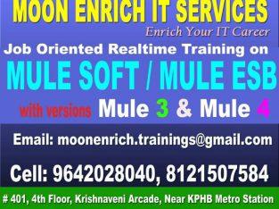 MULESOFT / MULE ESB