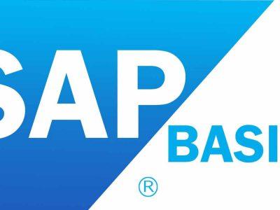 SAP Basis HANA Administration